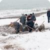 После шторма крымчане ищут золото на пляжах
